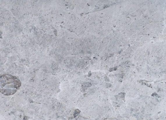 Известняк доломитизированный серый