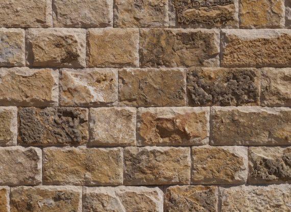 Известняк доломитизированный  коричневый скала